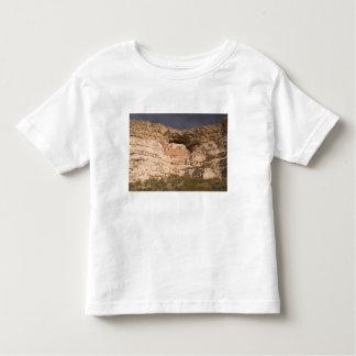 USA, Arizona, Camp Verde: Montezuma Castle Toddler T-Shirt
