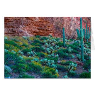 USA, Arizona. Desert Flora Card