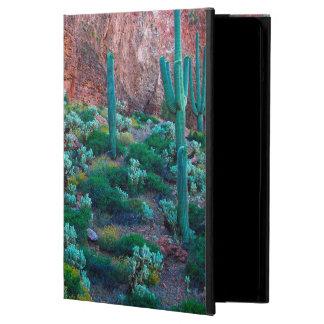 USA, Arizona. Desert Flora iPad Air Case