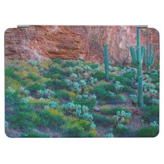 USA, Arizona. Desert Flora iPad Air Cover