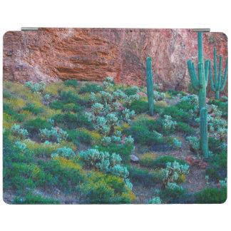 USA, Arizona. Desert Flora iPad Cover