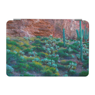 USA, Arizona. Desert Flora iPad Mini Cover