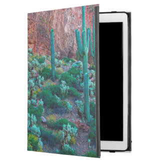 "USA, Arizona. Desert Flora iPad Pro 12.9"" Case"