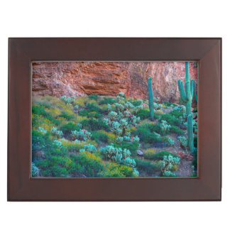 USA, Arizona. Desert Flora Keepsake Box