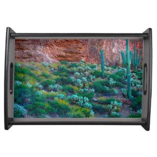 USA, Arizona. Desert Flora Serving Tray