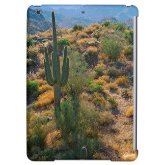 USA, Arizona. Desert View