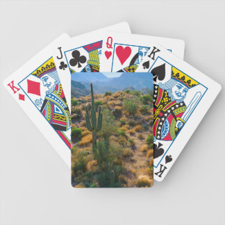 USA, Arizona. Desert View Bicycle Playing Cards
