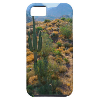 USA, Arizona. Desert View Case For The iPhone 5
