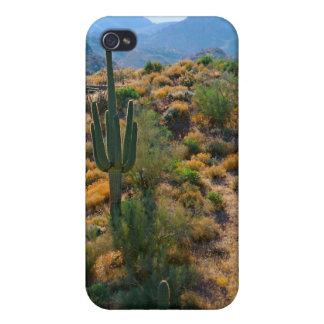 USA, Arizona. Desert View Cases For iPhone 4