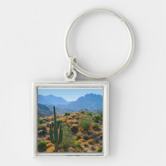 USA, Arizona. Desert View Key Ring