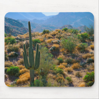 USA, Arizona. Desert View Mouse Mat