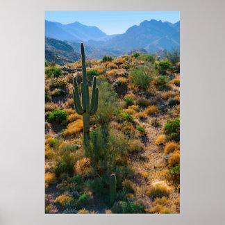 USA, Arizona. Desert View Poster