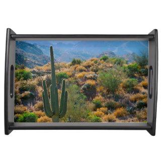 USA, Arizona. Desert View Serving Tray