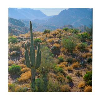 USA, Arizona. Desert View Tile