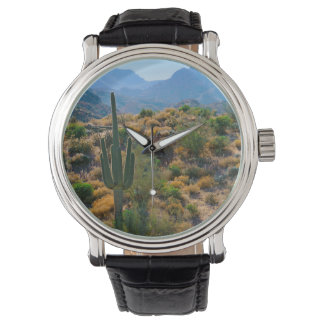 USA, Arizona. Desert View Watch