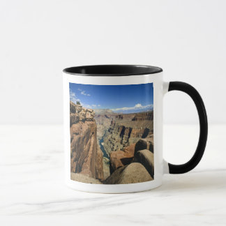 USA, Arizona, Grand Canyon National Park, Mug