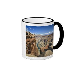 USA, Arizona, Grand Canyon National Park, Ringer Mug