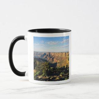 USA, Arizona, Grand Canyon National Park, View Mug
