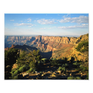 USA, Arizona, Grand Canyon National Park, View Photo Print