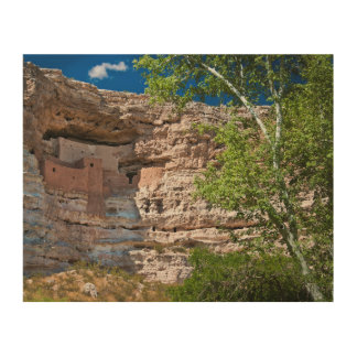 USA, Arizona. Montezuma Castle, The Ruins Wood Canvases
