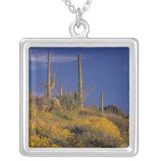 USA, Arizona, Organ Pipe Cactus National 2 Silver Plated Necklace