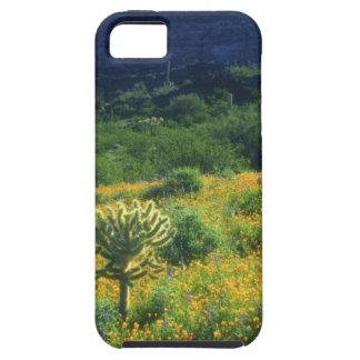 USA, Arizona, Organ Pipe Cactus National iPhone 5 Cover
