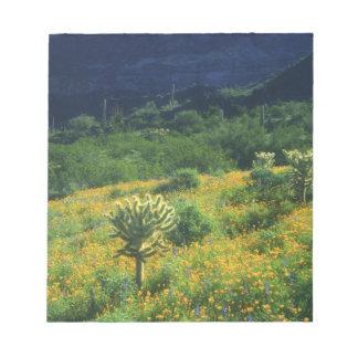 USA, Arizona, Organ Pipe Cactus National Notepad