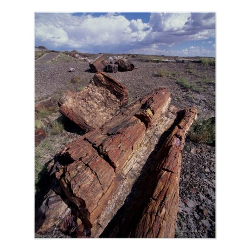 USA, Arizona, Petrified Forest National Park, 2 Poster