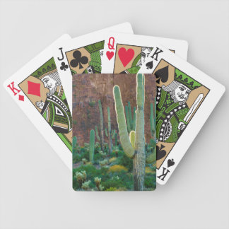 USA, Arizona. Saguaro Cactus Field By A Cliff Bicycle Playing Cards