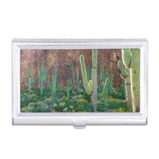 USA, Arizona. Saguaro Cactus Field By A Cliff Business Card Holder