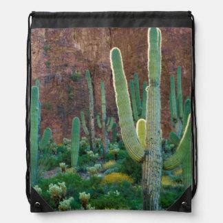USA, Arizona. Saguaro Cactus Field By A Cliff Drawstring Bag