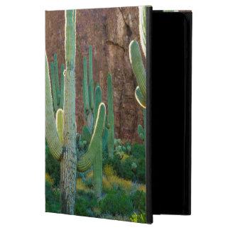 USA, Arizona. Saguaro Cactus Field By A Cliff iPad Air Case