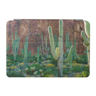 USA, Arizona. Saguaro Cactus Field By A Cliff iPad Mini Cover