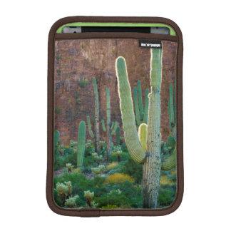 USA, Arizona. Saguaro Cactus Field By A Cliff iPad Mini Sleeve