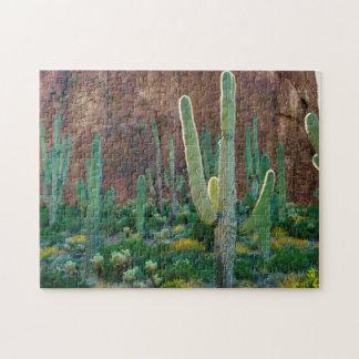USA, Arizona. Saguaro Cactus Field By A Cliff Jigsaw Puzzle