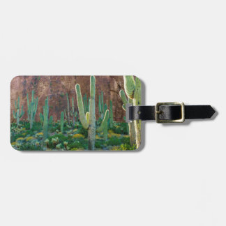 USA, Arizona. Saguaro Cactus Field By A Cliff Luggage Tag