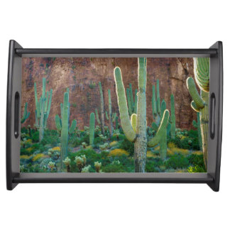USA, Arizona. Saguaro Cactus Field By A Cliff Serving Tray