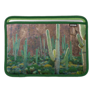 USA, Arizona. Saguaro Cactus Field By A Cliff Sleeve For MacBook Air