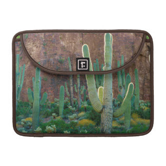 USA, Arizona. Saguaro Cactus Field By A Cliff Sleeve For MacBooks