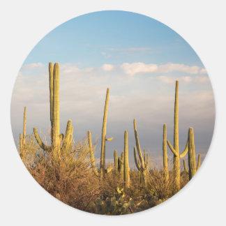 USA, Arizona, Saguaro National Park, Saguaro Classic Round Sticker