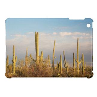 USA, Arizona, Saguaro National Park, Saguaro iPad Mini Cover