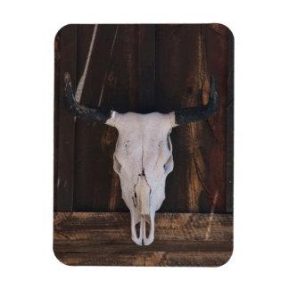 USA, Arizona. Skull On A Shop Wall Magnet