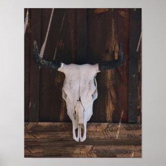 USA, Arizona. Skull On A Shop Wall Poster