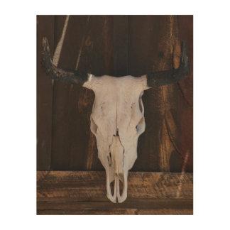 USA, Arizona. Skull On A Shop Wall Wood Canvas