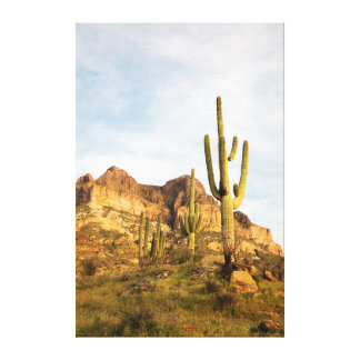 USA, Arizona, Tonto National Forest, Picketpost 2 Canvas Print