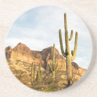 USA, Arizona, Tonto National Forest, Picketpost 2 Coaster