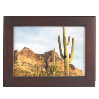 USA, Arizona, Tonto National Forest, Picketpost 2 Keepsake Box