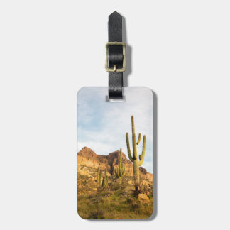 USA, Arizona, Tonto National Forest, Picketpost 2 Luggage Tag