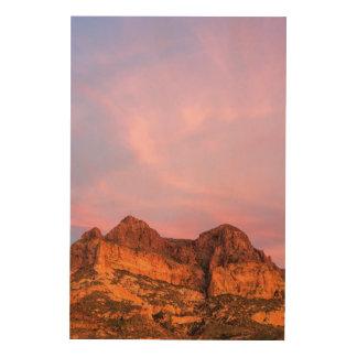 USA, Arizona, Tonto National Forest, Picketpost Wood Wall Decor