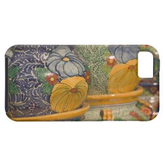 USA, Arizona, Tubac: South Arizona's Premier 2 iPhone 5 Case